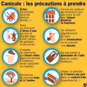 web_fil-canicule-01